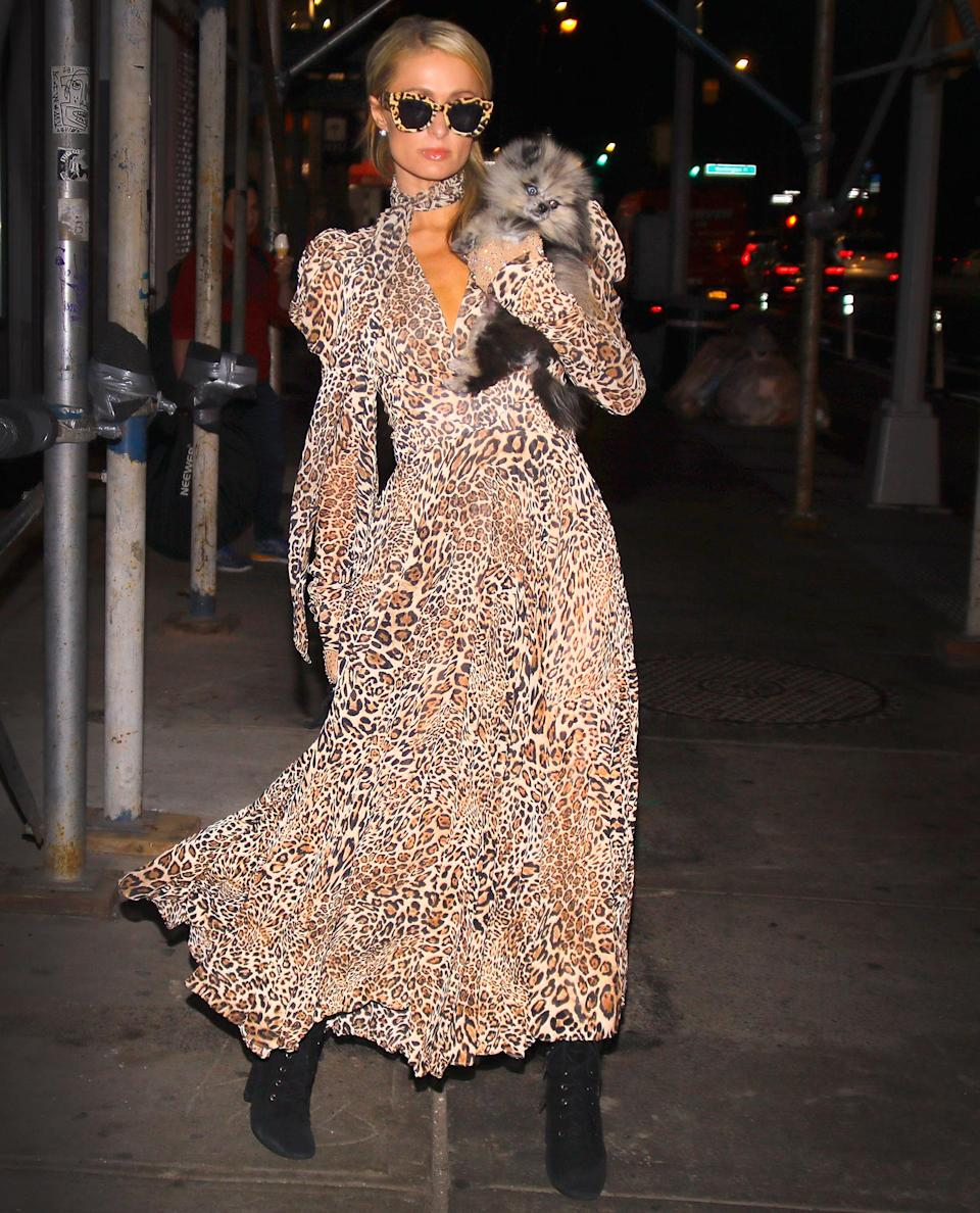 <p>Paris Hilton dresses in head-to-toe cheetah-print while walking back to her apartment with her dog in N.Y.C. on Tuesday. </p>