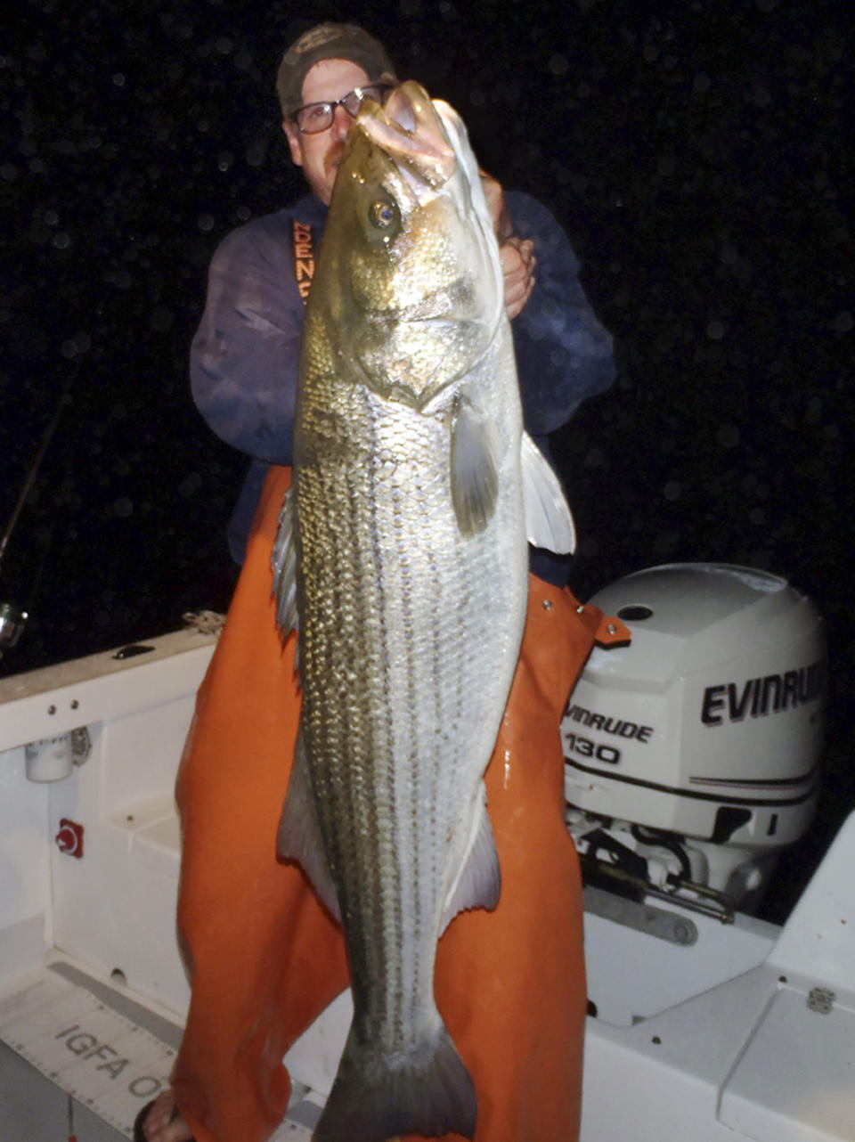 <p> In this 2012 photo provided by Greg Myerson shows Myerson, of North Branford, Conn., with one of the record striped bass he caught off the Connecticut coast. Myerson consistently catches striped bass 50 pounds and much larger by methodically studying his prey and developing devices to lure the fish to him. (AP Photo/Greg Myerson)</p>