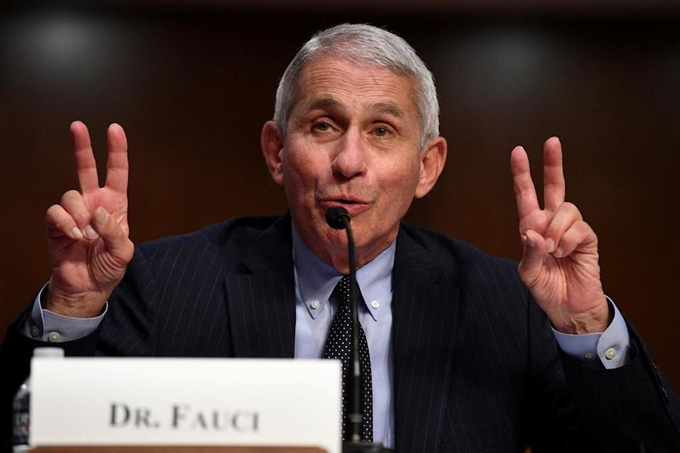 <p>Dr Anthony Fauci insisted he had 'a great deal of confidence' in UK regulators and their processes</p> (REUTERS)
