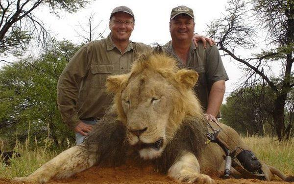 The Cecil the Lion case raised awareness of trophy hunting