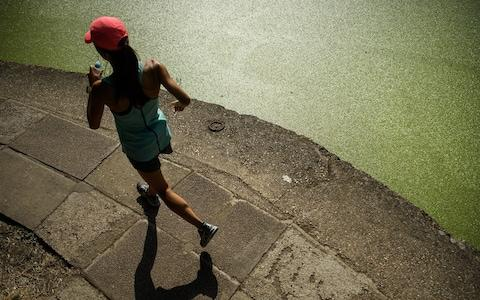 A jogger runs past the green coating on Regent's Canal following a huge increase in the amount of duck weed on the waterway - Credit: Leon Neal/Getty
