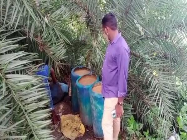 Police destroyed 3000 litres jaggery wash, seized 50 litres country liquor in Jaggampeta on Thursday. [Photo/ANI]