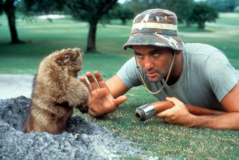 <p><strong><em>Caddyshack </em></strong></p><p>You might not remember this Bill Murray comedy set on a golf course in Nebraska, but we guarantee your dad does. </p>