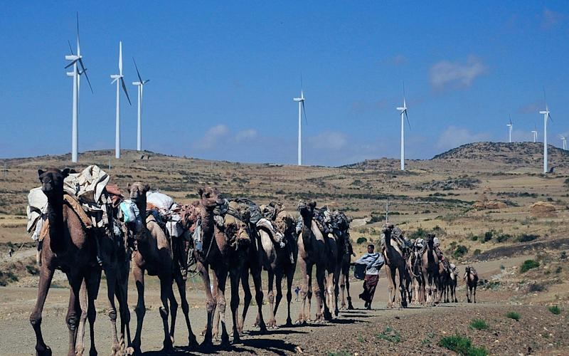 An Ethiopian wind far is one of the projects earmarked for funds from the British-backed scheme - 2014 AFP