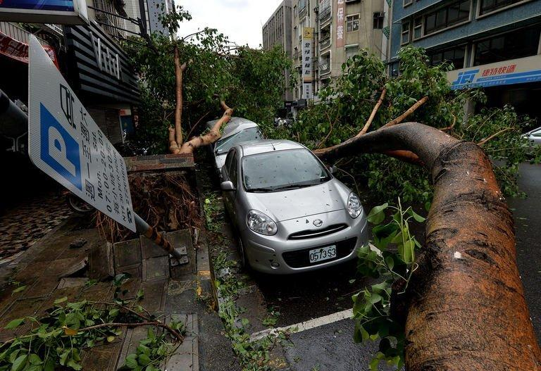 Vehicles damaged by fallen trees after Typhoon Soulik hit Taipei, on July 13, 2013. Typhoon Soulik has battered Taiwan with torrential rain and powerful winds that left two people dead and at least 100 injured