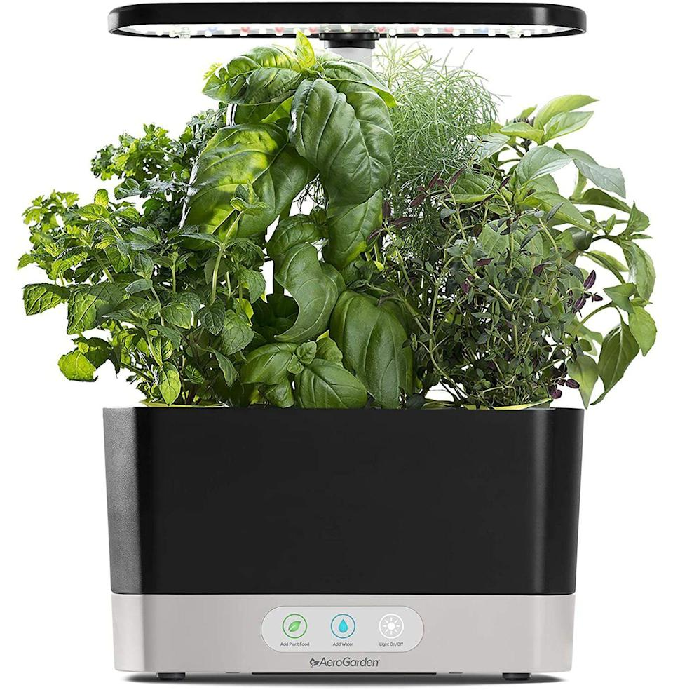 """<p><strong>AeroGarden</strong></p><p>amazon.com</p><p><strong>$84.95</strong></p><p><a href=""""https://www.amazon.com/dp/B08XPXZHXX?tag=syn-yahoo-20&ascsubtag=%5Bartid%7C10054.g.36716381%5Bsrc%7Cyahoo-us"""" rel=""""nofollow noopener"""" target=""""_blank"""" data-ylk=""""slk:Buy"""" class=""""link rapid-noclick-resp"""">Buy</a></p><p><strong>Save 43% with Prime</strong></p><p>Never underestimate the impact of an endless supply of fresh herbs and greens.</p>"""