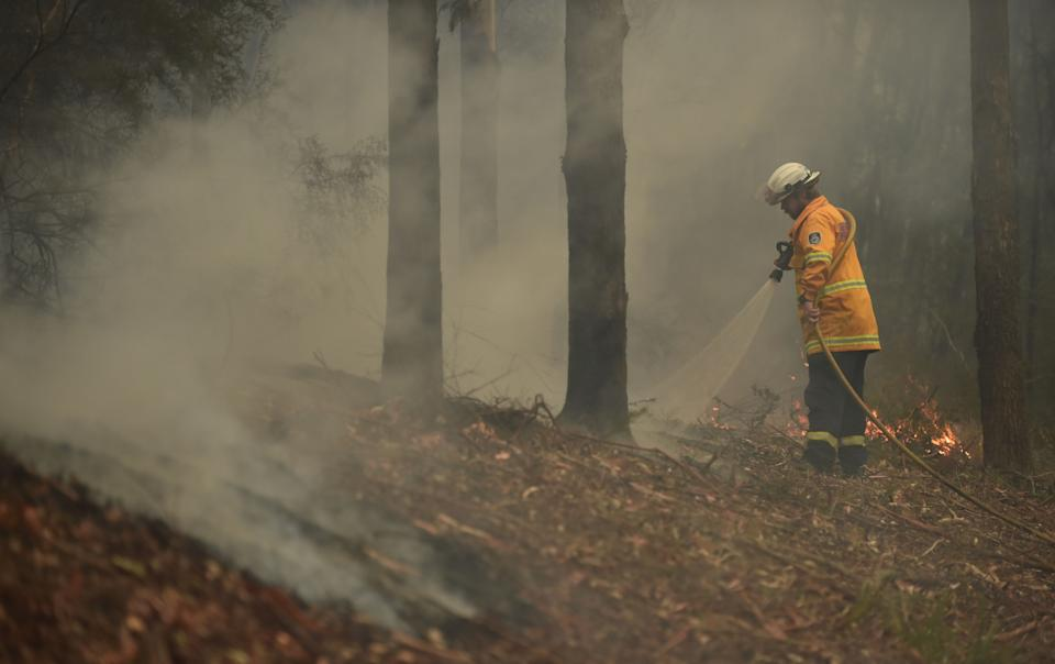 A firefighter tackles a bushfire south of Nowra.