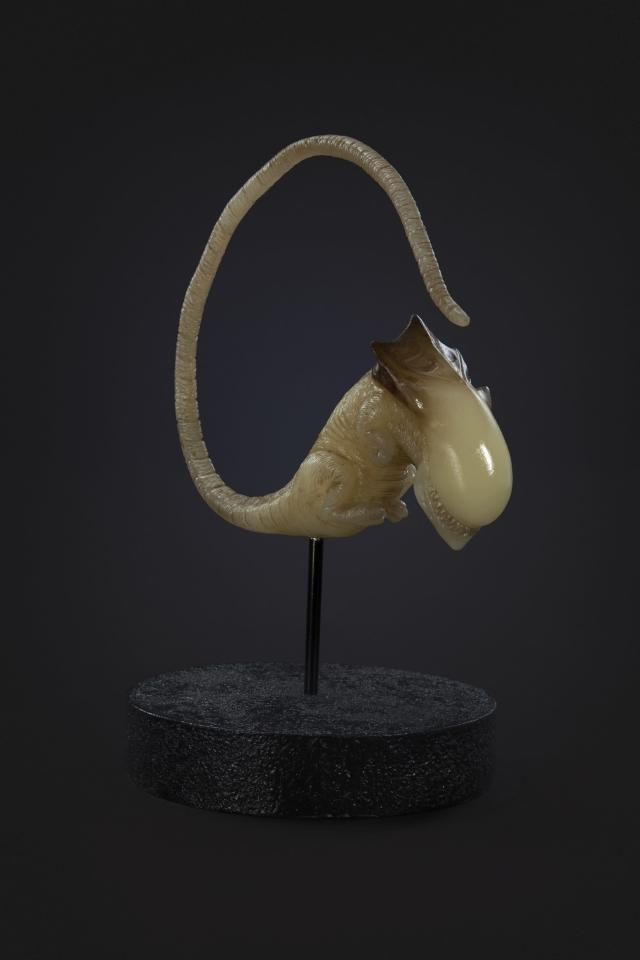 The Queen Alien embryo from the studioADI collection (Photo: studioADI)