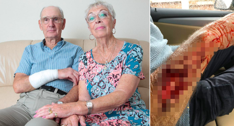 The pensioner had some of his arm torn off during the savage attack. (Caters)
