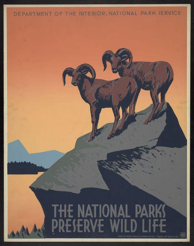 National Parks poster of two goats standing on cliff