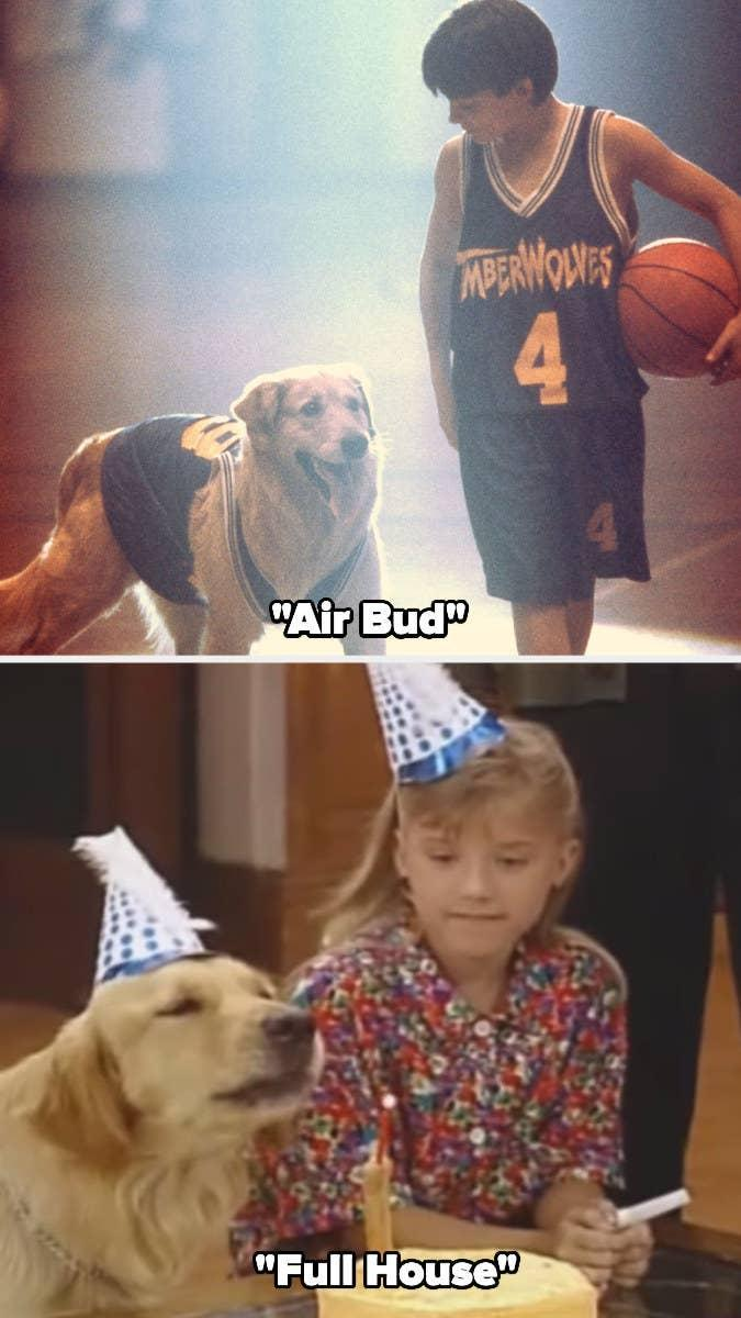 """Buddy in """"Air Bud"""" and """"Full House"""""""