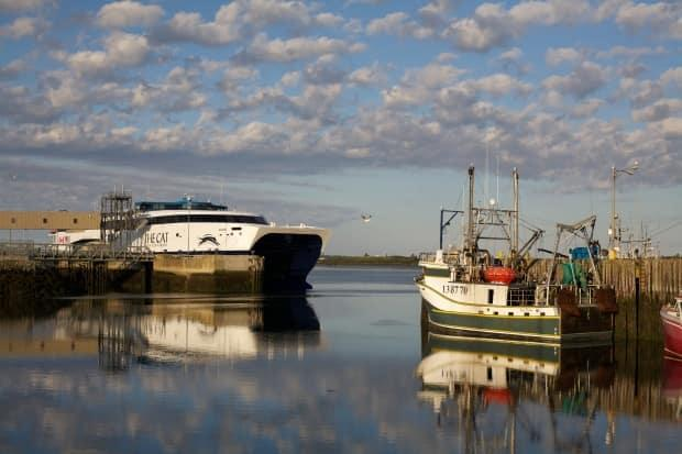 The Cat ferry sits tied up on Yarmouth's waterfront in this file photo. This will be the third season in a row that the ferry has not been able to sail between Nova Scotia and Maine.