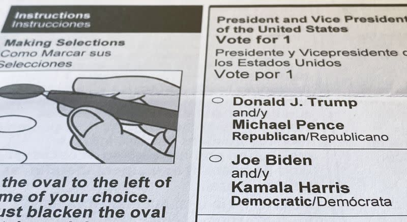 FILE PHOTO: An official mail-in ballot for the 2020 U.S. presidential election is seen in Maryland