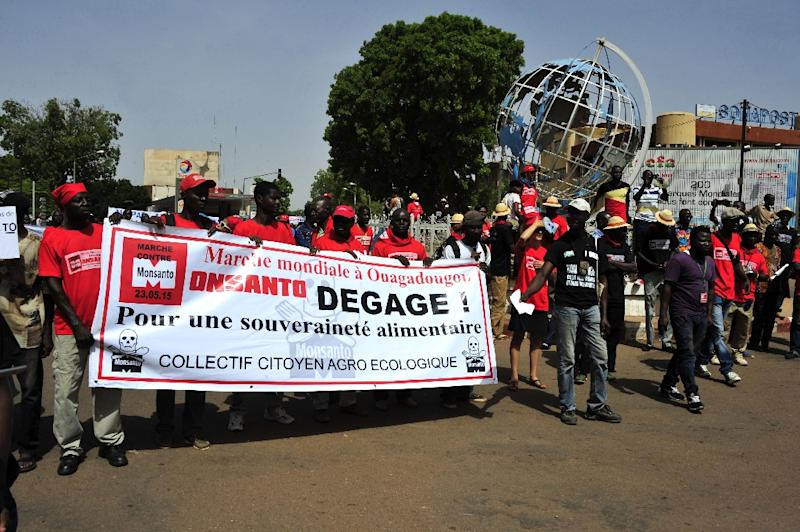 People protest biotechnology giant Monsanto and its genetically modified crops and pesticides on May 23, 2015 in Ouagadougou, Burkina Faso (AFP Photo/Ouoba-Ahmed)