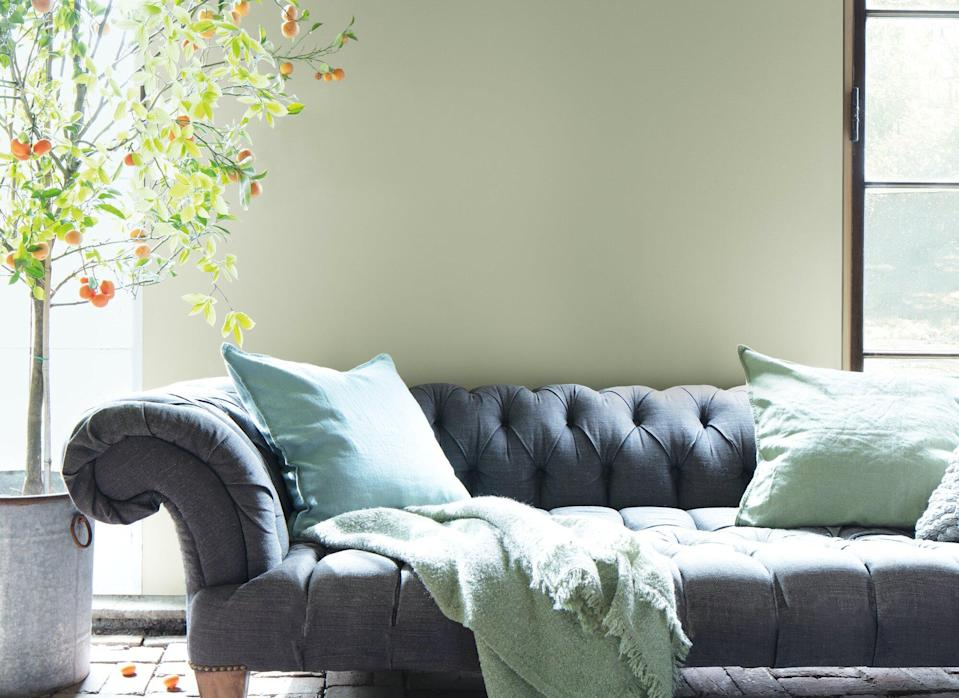 Sage green October Mist paint in living room with charcoal sofa: Benjamin Moore Color of the Year 2022, October Mist