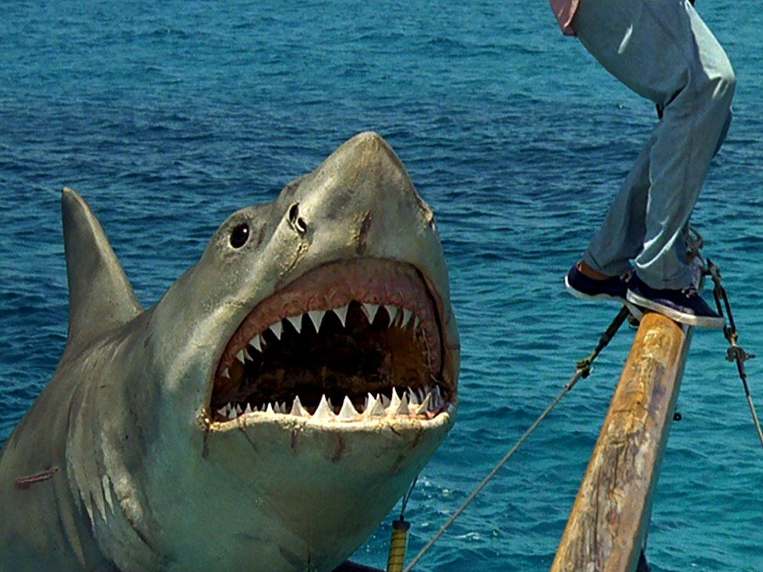 <p>The fourth instalment of the <em>Jaws</em> series managed to kill off the franchise. As well as receiving zero positive reviews, it was nominated for seven Golden Raspberry Awards. </p>