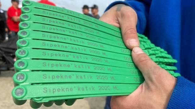 Sipekne'katik First Nation had issued licenses and lobster trap tags to seven Mi'kmaw harvesters under its Mi'kmaw-regulated fishery.