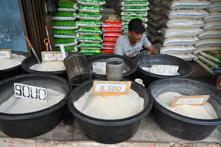 Rice is woven into Indonesia's culinary fabric (AFP Photo/ADEK BERRY)