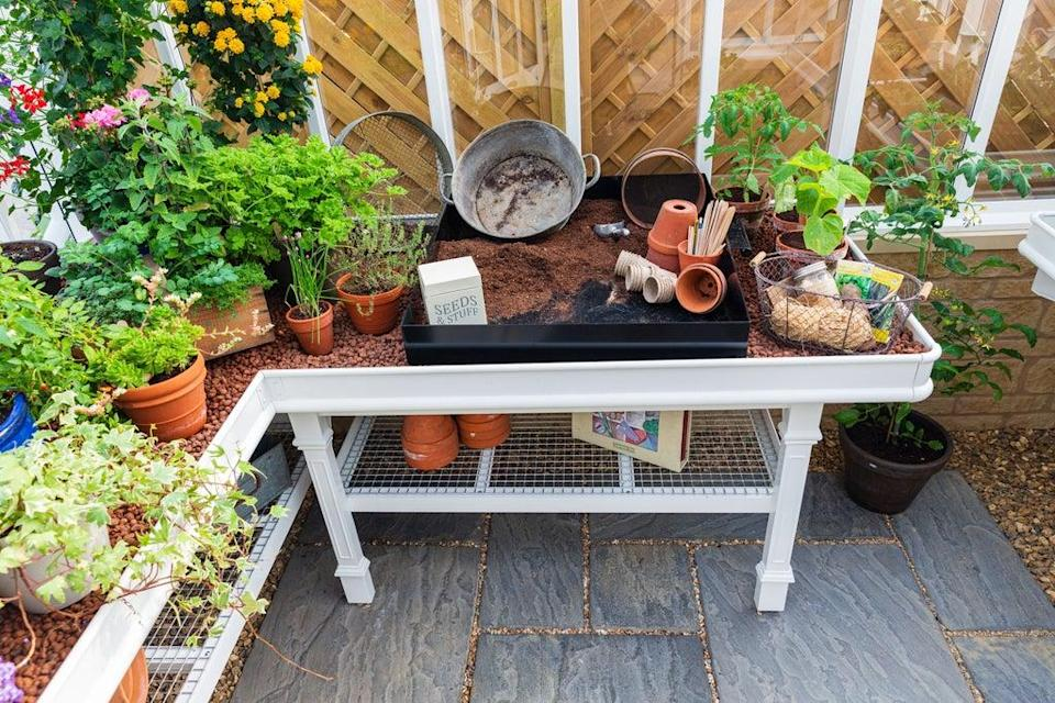 Keep areas clean and tidy to stop pests taking hold (Griffin Glasshouses/PA)