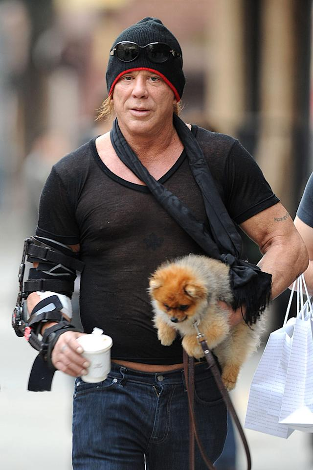 "Although he's one of Hollywood's ""tough guys,"" Mickey Rourke's sheer black v-neck tee, too-tight jeans, and frou frou puppy really make him look kinda girly. <a href=""http://www.splashnewsonline.com/"" target=""new"">Splash News</a> - March 21, 2010"