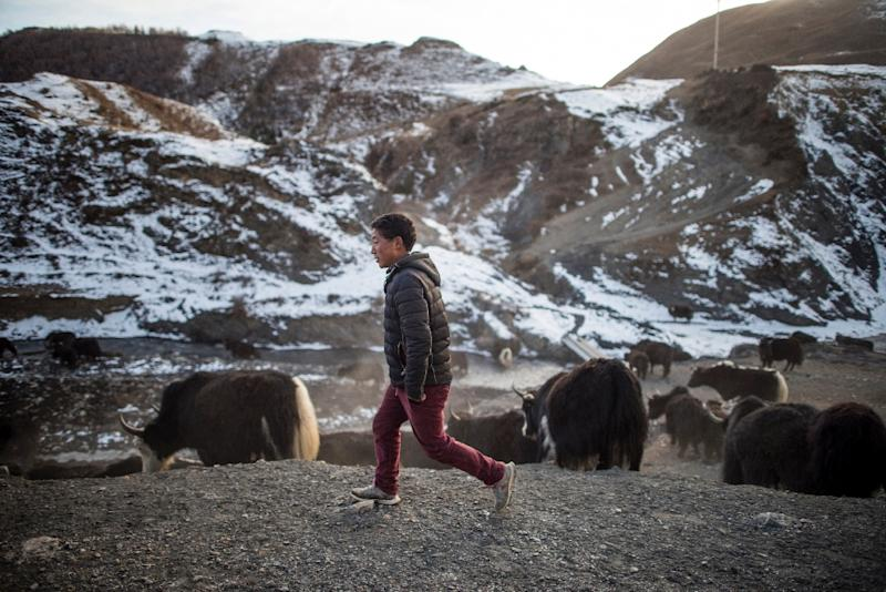 Chinese authorities say urbanisation in Tibetan areas and elsewhere will increase industrialisation and economic development, offering former nomads higher living standards and better protecting the environment (AFP Photo/Fred Dufour)