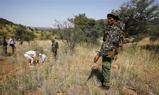 Members of the Pilanesberg National Park Anti-Poaching Unit (APU) stand guard as conservationists and police investigate the scene of a rhino poaching incident in South Africa, April 19, 2012. Elephant and rhino poaching is surging, conservationists say, an illegal piece of Asia's scramble for African resources, driven by the growing purchasing power of the region's newly affluent classes. In South Africa, nearly two rhinos a day are being killed to meet demand for the animal's horn, which is worth more than its weight in gold.