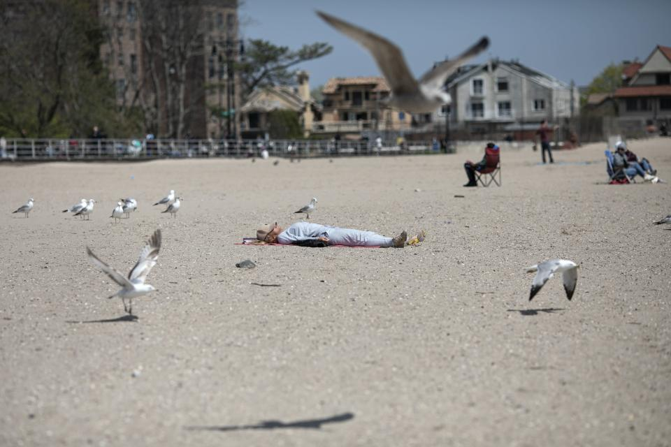 A woman sleeps on Brighton Beach in the Brooklyn borough of New York as seagulls flutter around her, on Saturday, April 25, 2020. With the weather warming up, more people wearing personal protective equipment are venturing out to the parks and streets, though most are still respecting the social distancing guidelines for the COVID-19 coronavirus. (AP Photo/Wong Maye-E)