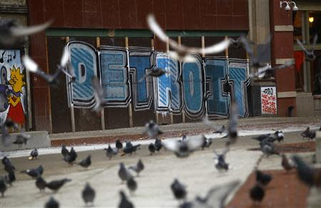 Pigeons are seen near graffiti in Detroit