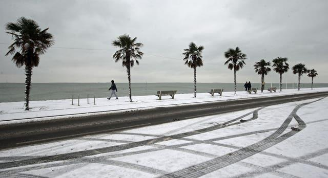 Palm trees on the snow-covered seafront at Southend-on-Sea in Essex