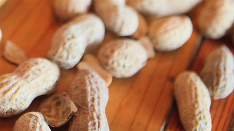An End to Food Allergies?