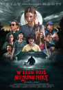 <p>Poland's <em>Nobody Sleeps in the Woods Tonight</em> is an example of great low budget horror. While some of the scares may be familiar, the overall experience is worth the watch for horror fans looking for movies outside Hollywood.</p>