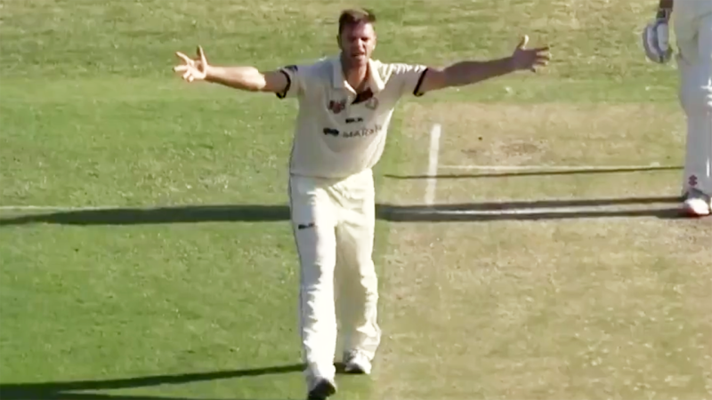 Mark Steketee, pictured here raging at the umpire in the Sheffield Shield.