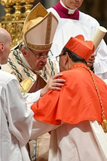 Pope Francis injects new blood into cardinals club