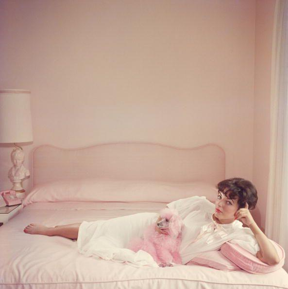 <p>There are people who like pink, and then there's Joan Collins. The famous actress posed for a photograph in her all-pink bedroom, alongside her pink poodle in 1955. </p>