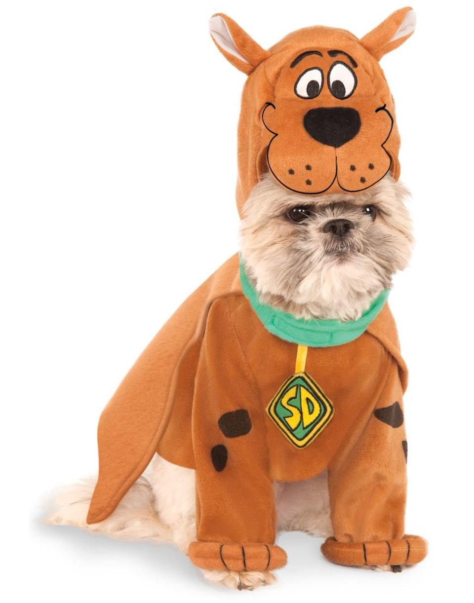 """<p><strong>Rubie's Costume</strong></p><p>walmart.com</p><p><strong>$32.58</strong></p><p><a href=""""https://go.redirectingat.com?id=74968X1596630&url=https%3A%2F%2Fwww.walmart.com%2Fip%2F270540259&sref=https%3A%2F%2Fwww.oprahdaily.com%2Flife%2Fg28714689%2Ffunny-dog-halloween-costumes%2F"""" rel=""""nofollow noopener"""" target=""""_blank"""" data-ylk=""""slk:Shop Now"""" class=""""link rapid-noclick-resp"""">Shop Now</a></p><p>Dress your dog up as one of TV's most beloved dog characters—Scoobert """"Scooby"""" Doo—and the compliments will be rolling in all night long.</p>"""