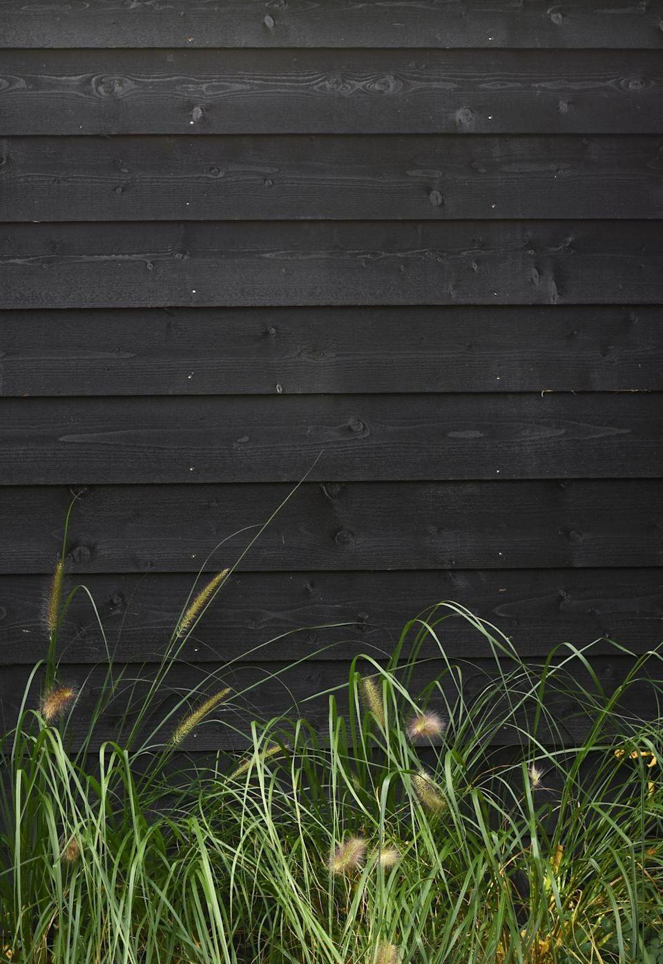 """<p>You'll be surprised by how much a lick of paint can transform an old fence and provide a striking backdrop for greenery and jewel-coloured plants. And the colour you should opt for? Black.</p><p>'The depth this colour gives is magical for garden designers; paint a fence black and it disappears, a shed becomes less of an eyesore and that old bench suddenly becomes a chic focal point,' says Chelsea Flower Show garden designer Andrew Duff.</p><p>This is a great garden idea if you want instant impact. Don't forget, you can give your plant pots a new lease of life by painting them too. </p><p>• Head to <a href=""""https://go.redirectingat.com?id=127X1599956&url=https%3A%2F%2Fwww.homebase.co.uk%2F&sref=https%3A%2F%2Fwww.redonline.co.uk%2Finteriors%2Feditors_choice%2Fg35933369%2Fgarden-ideas-on-a-budget%2F"""" rel=""""nofollow noopener"""" target=""""_blank"""" data-ylk=""""slk:Homebase"""" class=""""link rapid-noclick-resp"""">Homebase</a>, <a href=""""https://go.redirectingat.com?id=127X1599956&url=https%3A%2F%2Fwww.wickes.co.uk%2FProducts%2FGardens%2FExterior-Paint%2BWood-Treatment%2FGarden-Furniture-Treatment%2Fc%2F1015000&sref=https%3A%2F%2Fwww.redonline.co.uk%2Finteriors%2Feditors_choice%2Fg35933369%2Fgarden-ideas-on-a-budget%2F"""" rel=""""nofollow noopener"""" target=""""_blank"""" data-ylk=""""slk:Wickes"""" class=""""link rapid-noclick-resp"""">Wickes</a> or <a href=""""https://go.redirectingat.com?id=127X1599956&url=https%3A%2F%2Fwww.diy.com%2Fdepartments%2Fpainting-decorating%2Fpaint-wood-treatments%2Fexterior-woodcare%2Fshed-fence-paint-treatments%2FDIY1624152.cat&sref=https%3A%2F%2Fwww.redonline.co.uk%2Finteriors%2Feditors_choice%2Fg35933369%2Fgarden-ideas-on-a-budget%2F"""" rel=""""nofollow noopener"""" target=""""_blank"""" data-ylk=""""slk:B&Q"""" class=""""link rapid-noclick-resp"""">B&Q</a> for garden paint. </p>"""