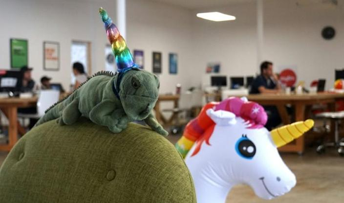 "An inflatable unicorn and a stuffed ""iguanacorn"" vie for attention at TheVentureCity's Miami offices. South Florida is a growing hub for startups and tech companies where unicorns are called, at least by one accelerator firm, ""iguanacorns"" (AFP Photo/Gianrigo MARLETTA)"