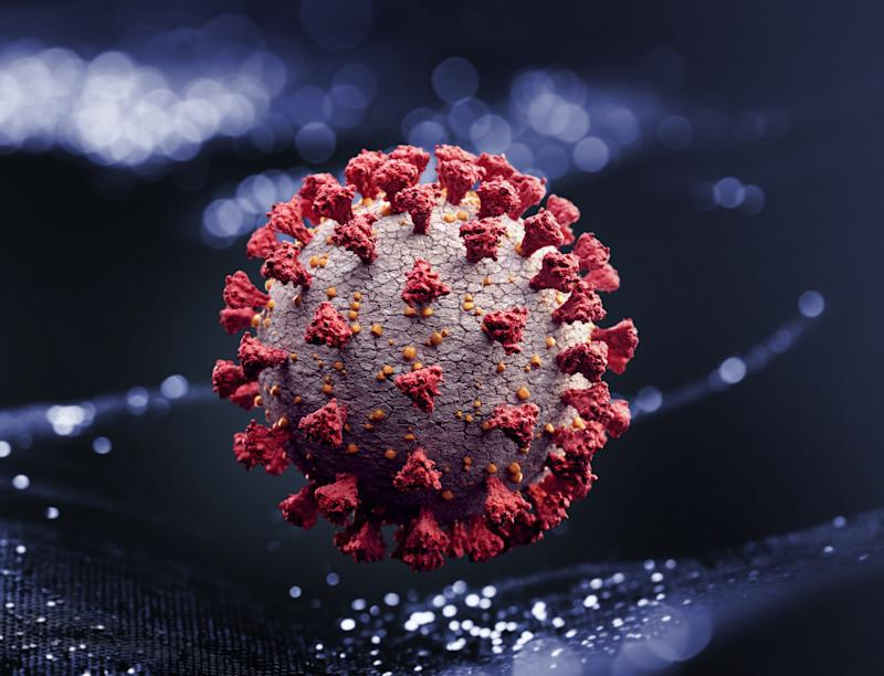 Corona virus (Photo: Radoslav Zilinsky via Getty Images)