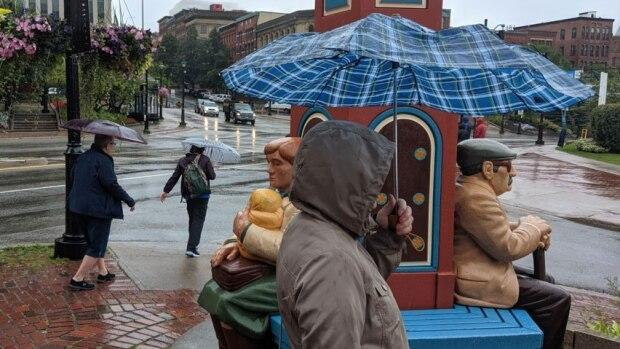 Heavy rain is expected to hit parts of New Brunswick on Friday and Saturday.  (Kirk Pennell/CBC - image credit)