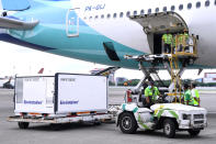 In this photo released by the Indonesian Presidential Palace, workers unload a container containing experimental coronavirus vaccines made by the Chinese company Sinovac from the cargo bay of a Garuda Indonesia plane at the Soekarno-Hatta International Airport in Tangerang, Indonesia, Tuesday, Jan, 12, 2021. Indonesia's Food and Drug Authority has green-lighted emergency use of the COVID-19 vaccine produced by China-based Sinovac Biotech Ltd., with vaccinations of high-risk groups expected to start later this week. (Indonesian Presidential Palace via AP)