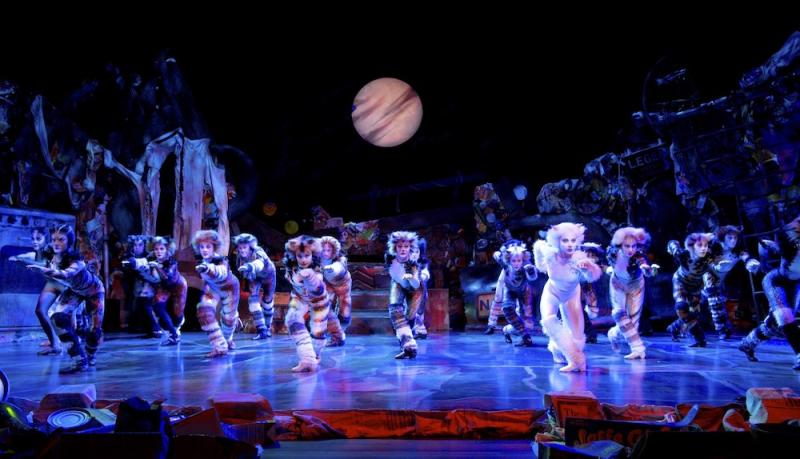 The popular Andrew Lloyd Webber musical was called off due to changes in the touring schedule. — Picture from Cats the Musical official tour website