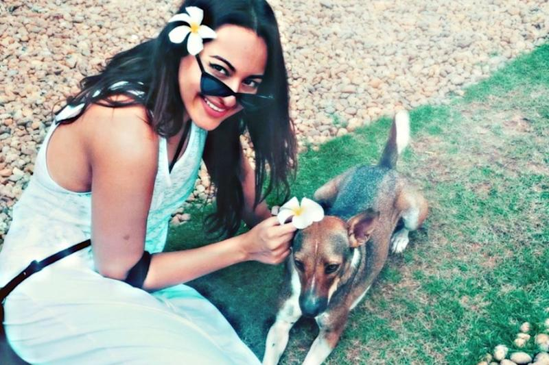 Sonakshi Sinha To People Abandoning Pets Amid Covid-19 Pandemic: 'You Are Idiots'