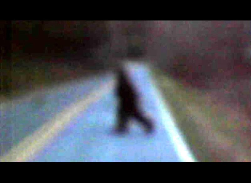 "Thomas Byers snapped this photo of ""Bigfoot"" along Golden Valley Church Road on March 22, 2011."