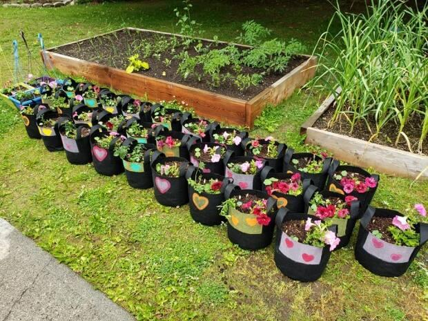 The Cheerful Flowers Project is the brainchild of Kristen Beattie who hoped by spreading seeds she could spread some joy in her northern B.C. community during these trying times. (Ffacebook/cheerfulflowersproject/ - image credit)