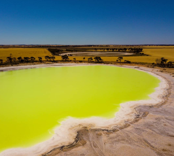 Pictured is the incredible yellow tones of Statues Lake in Kondinin Shire – almost 200kms east of Perth, Western Australia.