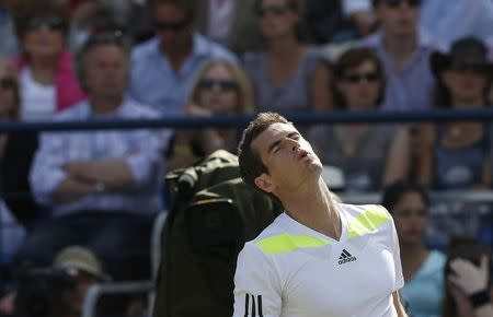 Britain's Murray reacts during his match against Czech Republic's Stepanek at the Queen's Club Championships in west London
