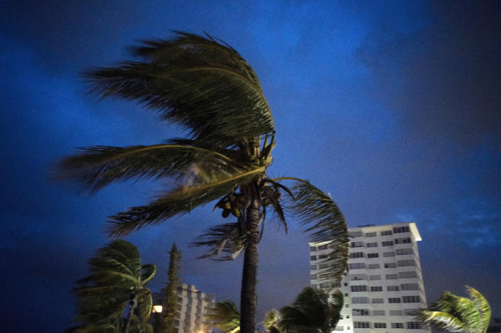 Strong winds move the palms of the palm trees at the first moment of the arrival of Hurricane Dorian in Freeport, Grand Bahama, Bahamas, Sept. 1, 2019. (Photo: Ramon Espinosa/AP)