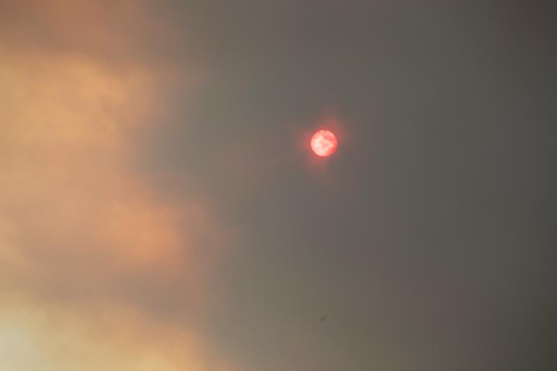 BUMBALONG, AUSTRALIA - FEBRUARY 03: Bushfire smoke obscures the sun on February 3, 2020 in Bumbalong, Australia. In many fire affected areas, surviving wildlife are now suffering from dehydration and near starvation, due to the widespread habitat destruction and continued drought. (Photo by John Moore/Getty Images)