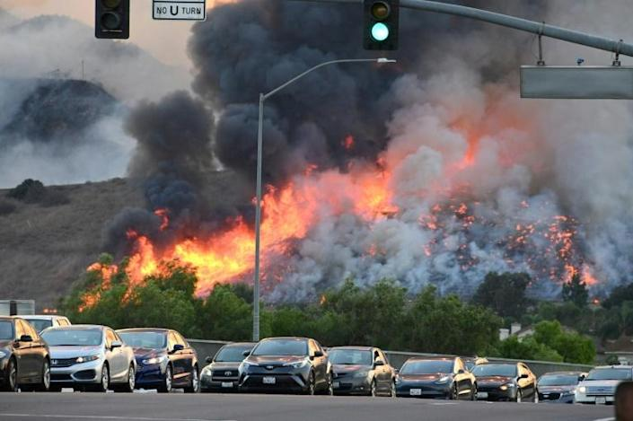 Wildfires and hurricanes have increased in frequency and ferocity in recent years, with many scientists pointing to human activity as a driver of the climate change that is fueling such phenomenon