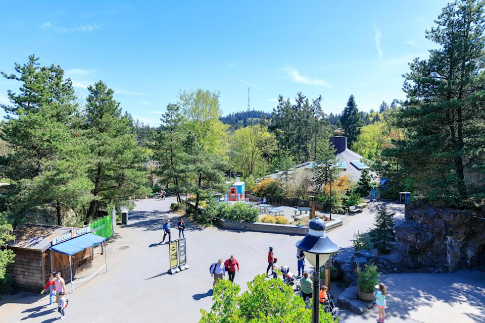 """<p><strong>Give us a look at this zoo from 30,000 feet.</strong><br> Home to nearly 3,000 animals—including 19 endangered species—this wild and woolly 64-acre animal park is so thoroughly landscaped with native plants that it blends seamlessly into the lush <a href=""""https://www.cntraveler.com/activities/portland/washington-park?mbid=synd_yahoo_rss"""" rel=""""nofollow noopener"""" target=""""_blank"""" data-ylk=""""slk:Washington Park"""" class=""""link rapid-noclick-resp"""">Washington Park</a> landscape surrounding it. Put on your walking shoes before you head through the front gates, because you're going to cover some serious ground as you weave through the 23 engaging exhibits, divided into five major themed areas: the Great Northwest, Pacific Shores, Discovery Zone, Africa, and the spectacular six-acre Elephant Lands. Thanks to the city's support in the form of a $128 million bond measure for zoo improvement, the grounds are only getting better with new exhibits like the Polar Passage, Black Rhino, and Primate Forest. </p> <p><strong>What are your favorite animals to see?</strong><br> The sleek, slippery, and ever-playful North American river otters are riveting, the Penguinarium offers some of the best bird-watching ever; the Insect Zoo will entertain bug buffs for hours, and you mustn't miss Zawadi, Kya, and Neka, the trio of lions that rule the Predators of the Serengeti roost. But perhaps most mesmerizing is the expanded six-acre Elephant Lands. If you're visiting in summer, check the summer concerts calendar, which brings beloved musical guests like Ziggy Marley, The Roots, and """"Weird Al"""" Yankovic to the 3,800-seat outdoor amphitheater; in winter, queue up early for <a href=""""https://www.cntraveler.com/galleries/2015-12-08/copenhagen-to-quebec-14-cities-that-do-christmas-best?mbid=synd_yahoo_rss"""" rel=""""nofollow noopener"""" target=""""_blank"""" data-ylk=""""slk:ZooLights"""" class=""""link rapid-noclick-resp"""">ZooLights</a>, the wildest holiday light display in town, with nearly two million twinkle lig"""